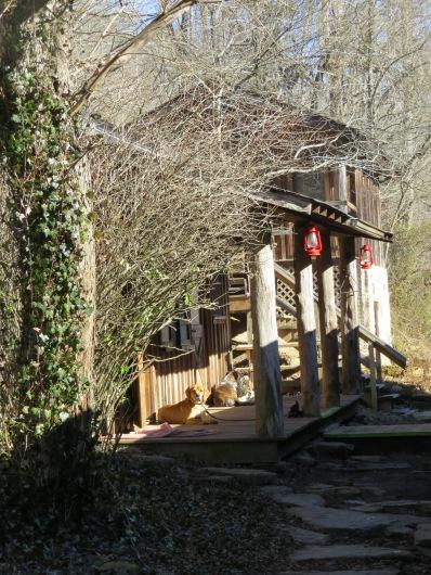 Charit Creek Canteen