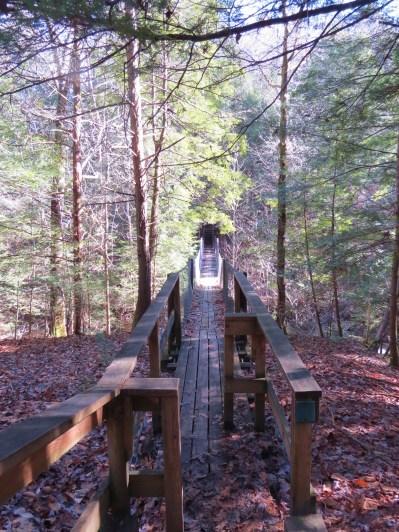 Big South Fork Bridge