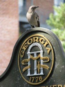Bird Sign