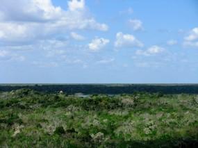Coba Pyramid View